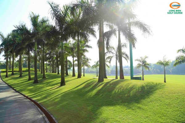 Top 10 sân golf chuyên nghiệp và sân tập golf ở Hà Nội