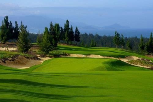 Thị Trường Golf Việt Nam Tăng Trưởng Nhanh Nhất Thế Giới Theo Forbes